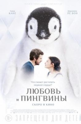 Любовь и пингвиныLe secret des banquises постер
