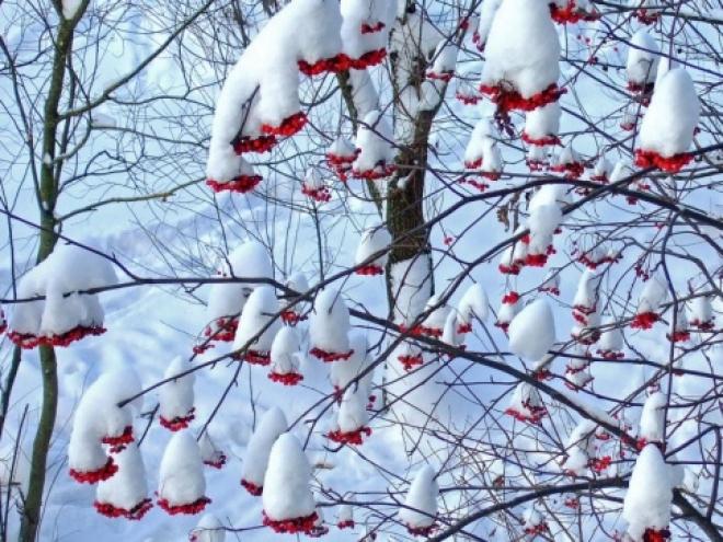 К концу недели в Самарской области похолодает