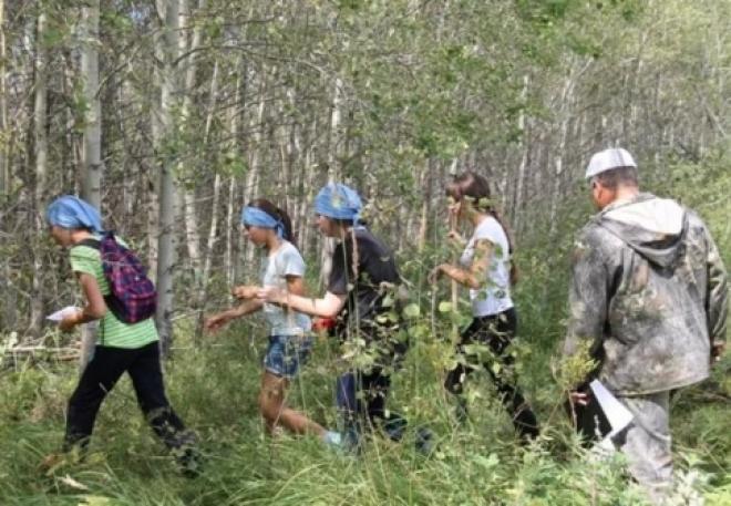 В Самарской области состоится слет юных лесоводов