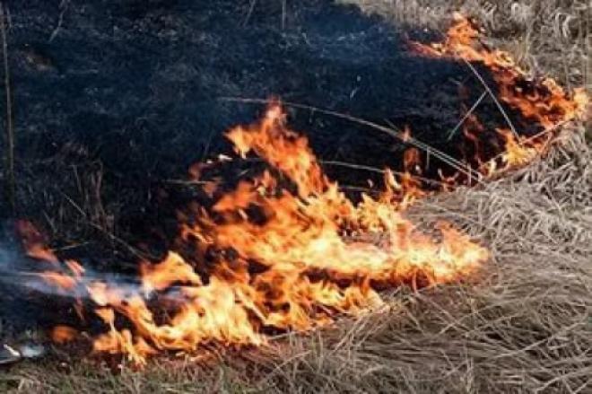 В Самарской области сухая трава загорелась в 19 местах